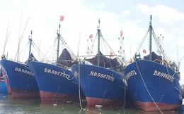 Nam Triệu sẽ 'xem xét đền bù hợp lý cho ngư dân'