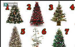 Đo khiếu thẩm mỹ và giải mật tính cách qua việc chọn cây thông Noel bạn cho là đẹp nhất
