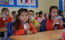 Chương trình Sữa học đường quốc gia: Quà quý cho trẻ đã trọn vẹn