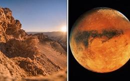 Phát hiện sự sống ở sa mạc khắc nghiệt nhất hành tinh
