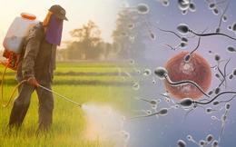 """Tinh trùng sẽ giảm 50% trong 40 năm: 5 giải pháp nên làm ngay nếu không muốn """"tuyệt chủng"""""""