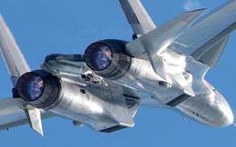 """Tiêm kích Su-30 Nga """"cắt mặt"""" máy bay chống tàu ngầm Mỹ"""