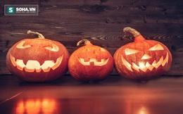 Bí mật chưa kể về Halloween 31/10: Quả gì từng được khắc làm lồng đèn trước bí đỏ?
