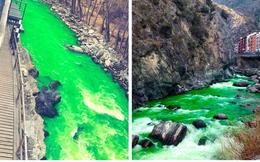 Sự thật không ai ngờ tới đằng sau con sông nước chuyển màu xanh ngắt, bị tố ô nhiễm