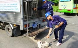 Thực hư thông tin giả mạo Đội săn bắt chó TP HCM để bắt chó nhà dân