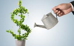 Ai cũng mải miết theo đuổi tiền bạc mà quên mất có những cách làm giàu đơn giản thế này