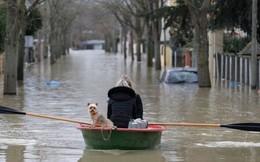 Hình ảnh nước tràn bờ sông Seine khiến Paris thất thủ