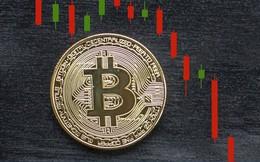 Bitcoin lại bị bán tháo, sắp 'thủng' đáy 10.000 USD?