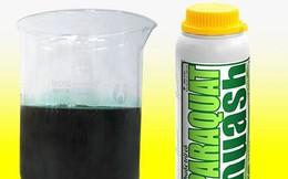 Ngộ độc paraquat nguy hiểm như thế nào?