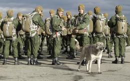 Điểm yếu khó có thể cứu vãn được của lực lượng lính dù Nga