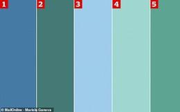 Nhìn bảng gồm 5 màu này, bạn có biết được đâu là màu xanh dương, đâu là màu xanh lá?