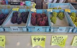 Cảnh sát Nhật bắt giữ cụ ông 73 tuổi với cáo buộc... ăn trộm một quả nho
