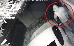Clip: Đạo chích bẻ khóa, trộm siêu xe Mustang trong 20 giây