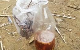 Xác định chất độc trong rễ cây ngâm rượu khiến 2 cậu cháu tử vong
