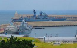 Những ngày sôi động tại Jeju