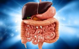 Cơ thể tích tụ quá nhiều chất độc sẽ sinh bệnh nguy hiểm: Đừng bỏ qua 4 cách thải độc này