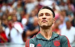 Bayern Munich họp báo để… loại bỏ Zidane và Wenger