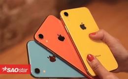 iPhone Xr chính thức mở bán, đây là hai màu máy gây sốt, bán hết veo chỉ sau vài giờ