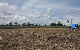 Thảm sát trên nông trường trồng mía, nhiều người chết