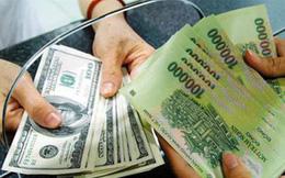 Bị phạt 90 triệu vì đổi 100 USD trong tiệm vàng ở Cần Thơ