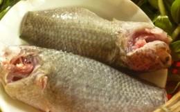 Món ăn từ cá bổ âm, bổ dương
