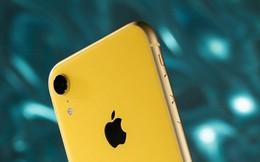 """Cú sốc mang tên """"ảnh bokeh trên iPhone XR"""": Apple đã vươn lên ngồi cùng một mâm với Google về AI"""