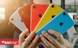 Bất ngờ với sự 'cứng đầu' của iPhone XR trong các thử nghiệm thả rơi