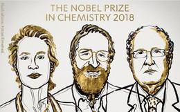 Nobel Hóa học 2018 được trao cho các nhà khoa học 'điều khiển được quy trình tiến hóa'