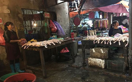 Phát hiện thịt gà, lợn nhiễm salmonella, thủy sản có thủy ngân