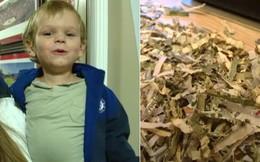 Bố mẹ tích cóp 25 triệu đồng tiền trả nợ, con trai vui tay bỏ luôn vào máy xén giấy