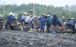 Chính quyền Đà Nẵng thất hứa với dân, hứa thêm lần nữa