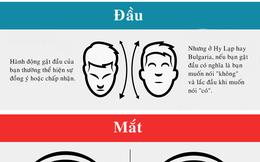 [Infographic] Ngôn ngữ cơ thể khác nhau như thế nào giữa các nền văn hoá?