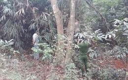 Nam thanh niên gục chết trong khuôn viên chùa