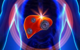 4 yếu tố không ngờ có thể gây viêm gan B: Hầu hết mọi người đều có thể mắc mà không biết