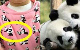 Mua áo hồng hình có gấu trúc đáng yêu cho con, bà mẹ phát hoảng bắt con cởi ra ngay lập tức khi nhìn kỹ