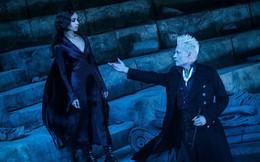 Các cảnh phim mãn nhãn trong bom tấn phép thuật Fantastic Beasts 2