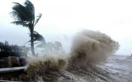 Tâm bão của cơn bão số 9 đang ở đâu?