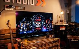TV OLED đáp ứng tiêu chí khắt khe của chuyên gia Visual Arts