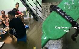Mưa ngập ở TP HCM: Đường phố như biến thành sông, người dân chật vật thích nghi hoàn cảnh