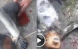 Đã xác định được 5 người liên quan vụ giết khỉ rồi phát trực tiếp lên facebook