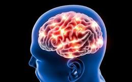 Thiếu máu não: Biểu hiện thoáng qua có thể tổn hại tới sinh mệnh