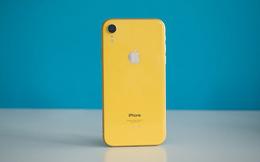 Thật bất ngờ, chẳng ai nghĩ đây lại đang là chiếc iPhone bán chạy nhất của Apple