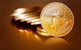 Bitcoin lao dốc, đồng tiền mã hóa tiếp tục ngập sâu trong sắc đỏ