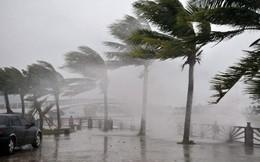 Áp thấp nhiệt đới với gió giật cấp 8 có khả năng mạnh lên thành bão