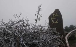Đỉnh Mẫu Sơn xuống dưới 0 độ, xuất hiện băng giá