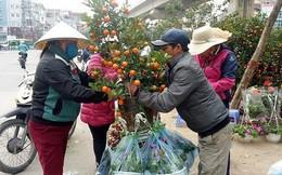 Nở rộ dịch vụ chở hoa, cây cảnh kiếm tiền triệu mỗi ngày