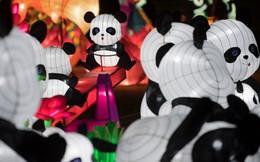 Lung linh lễ hội đèn lồng mừng Tết Mậu Tuất từ LasVegas