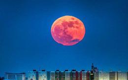 Tổng hợp 21 khoảnh khắc đẹp mê hồn của Siêu trăng xanh máu trên khắp thế giới