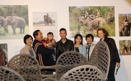"""Gia tài của """"vua voi"""" Tây Nguyên cuối cùng ở Hà Nội"""