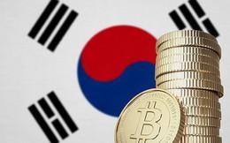 Bitcoin đã tăng giá gấp đôi chỉ trong 2 tuần qua